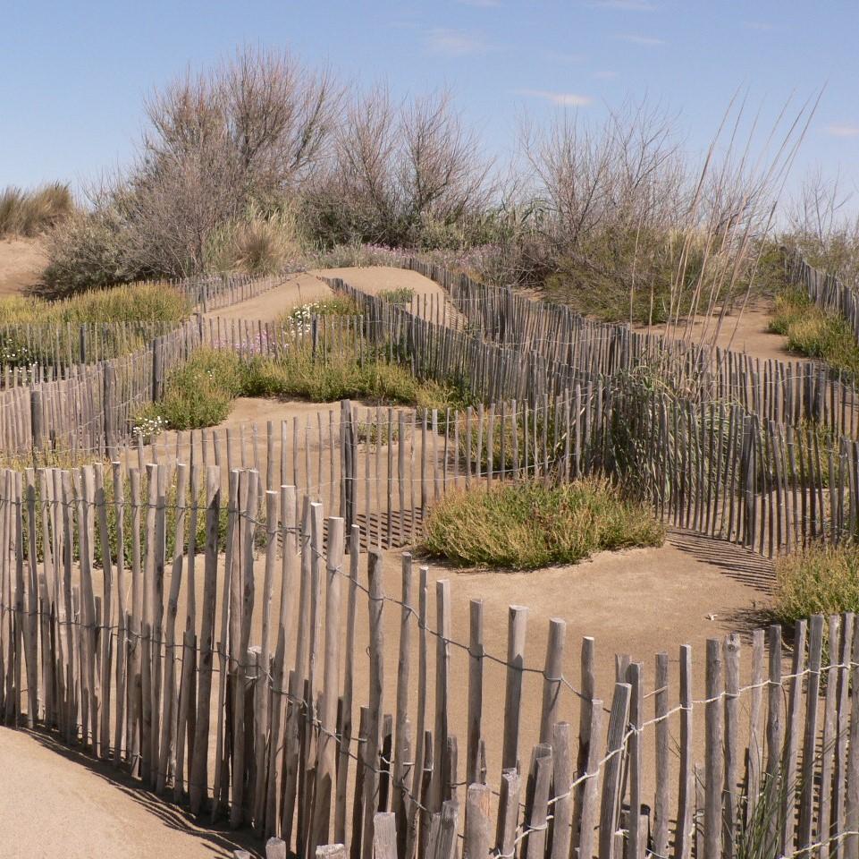 Dunes de l'Espiquettes